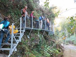 Pasarelas del Valle del Genal. AEA El Bosque Animado