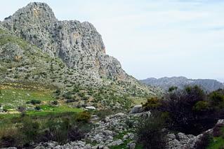 Serranía de Ronda. AEA Bosque Animado.