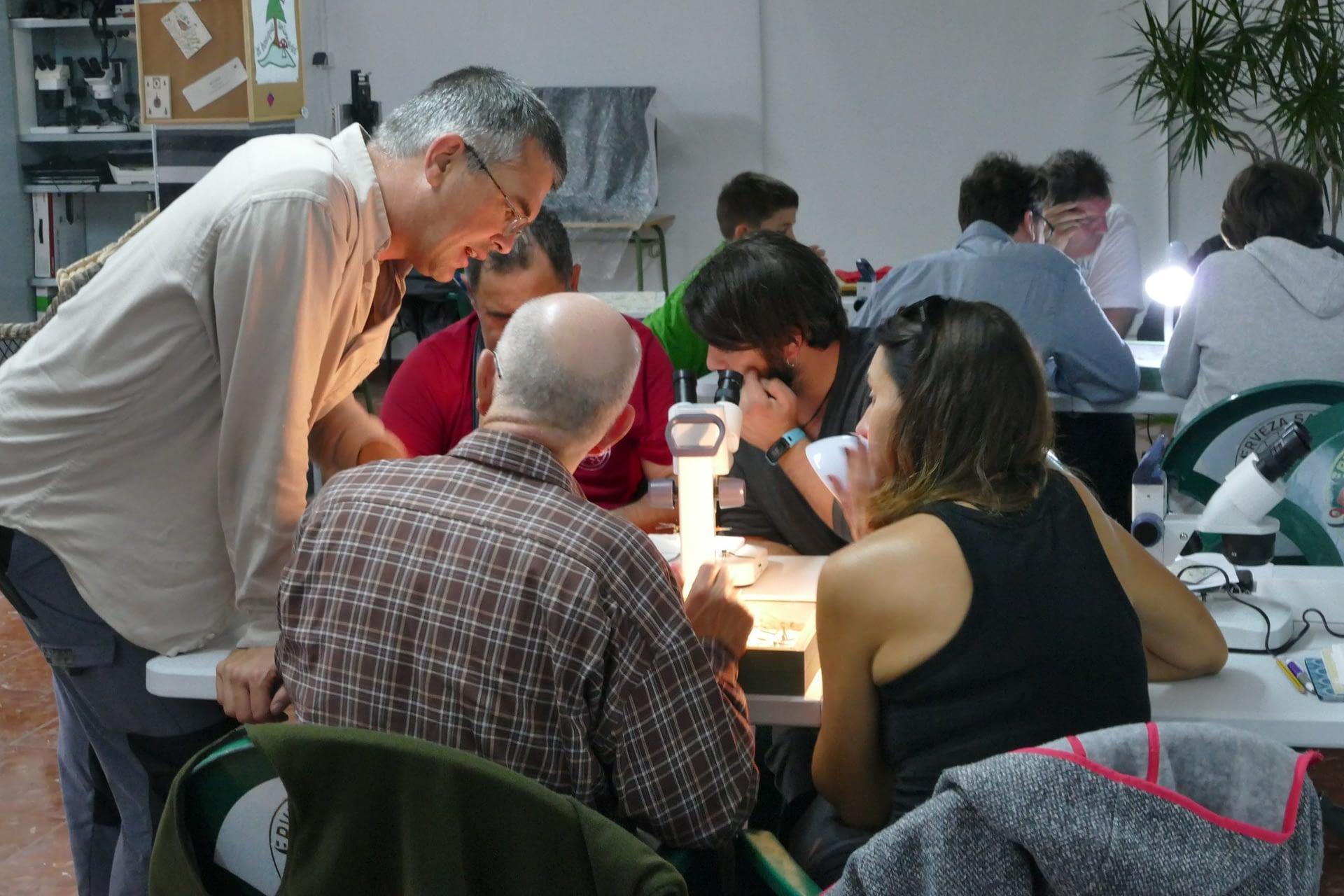 Environmental activities at the Genal