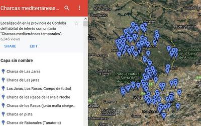 Charcas mediterráneas temporales en las provincias de Córdoba, Málaga, Sevilla y Granada