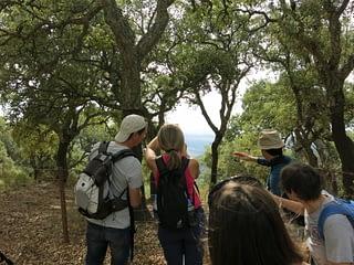 Observando el paisaje entre los árboles. AEA El Bosque Animado