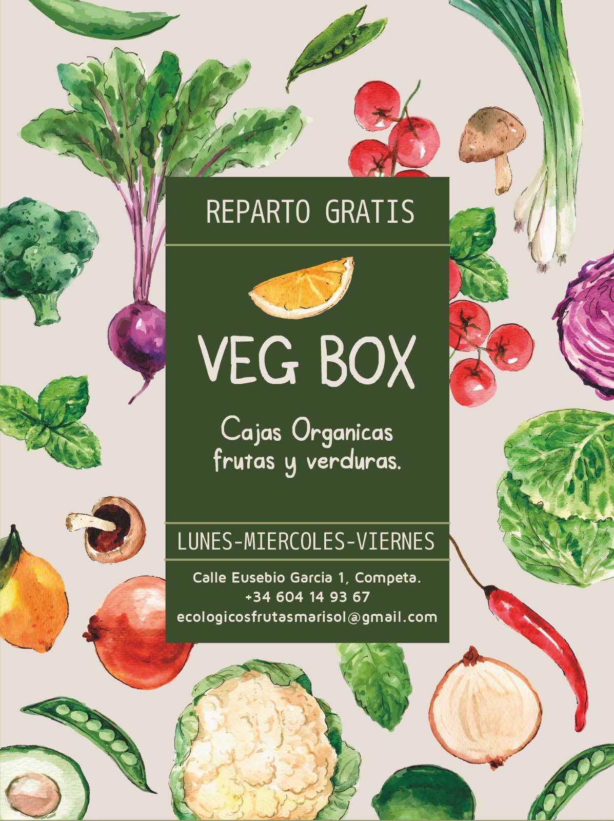 Logo Fruteria ecológica Vegabox