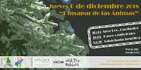 Crowfunding BFS – 12/12/18 – Pinsapar Sierra Las Nieves