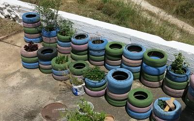 Eco-Huerto Pedagógico