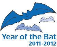 Año internacional de los murciélagos