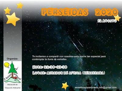 Cartel Lluvia de estrellas Perseidas 2020 AEA Bosque Animado