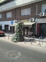 Cuando las plantas toman la calle…