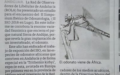 La ROLA en Andújar